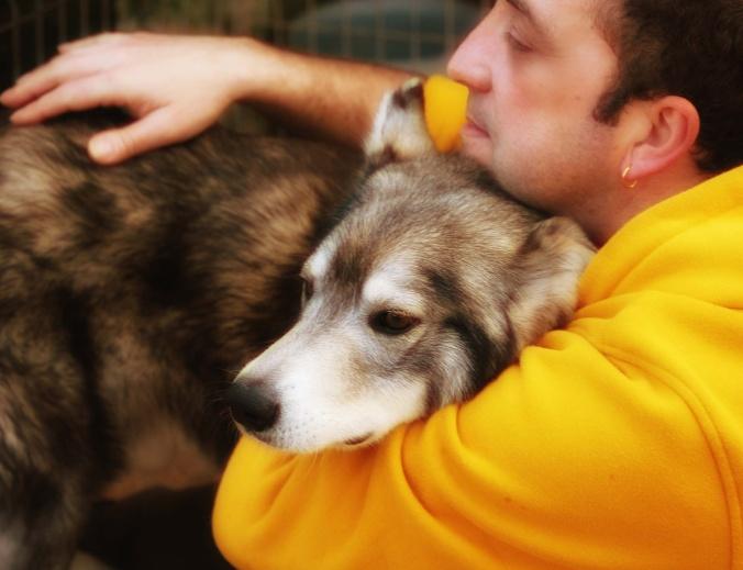 Amizade entre o  homem e o lobo